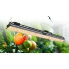 LED lempa augalams 300 w